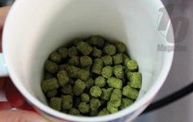 26-Beer3