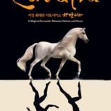 Cavalia: A Magical Encounter Between Human and Horse