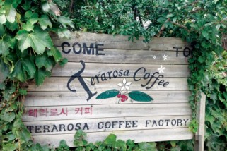 Terarosa Cafe and Coffee Factory