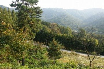 Geum River National Recreation Forest