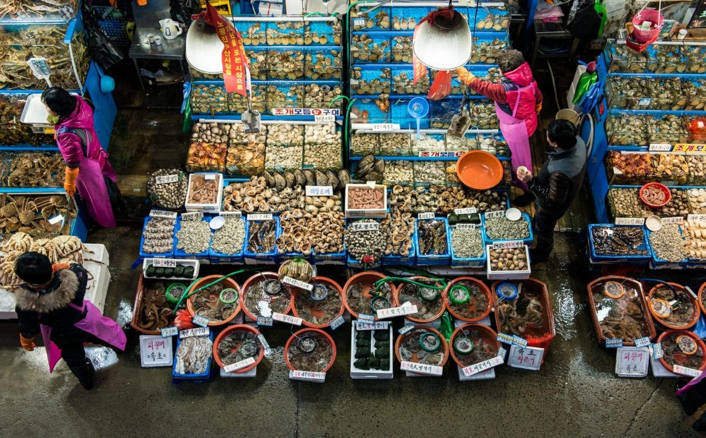 traditional markets in korea noryangjin