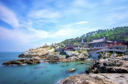 top reasons to visit busan