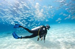 The 9 Best Busan Beach Activities To Do This Summer scuba diving