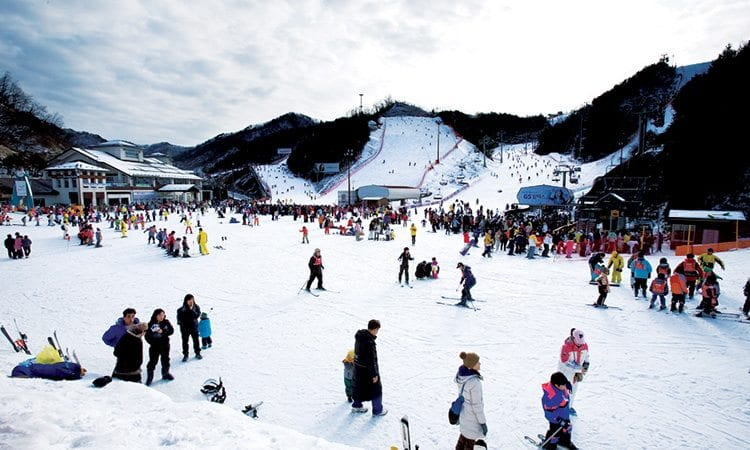 elysiun-gangcheon-resort-ski-resort