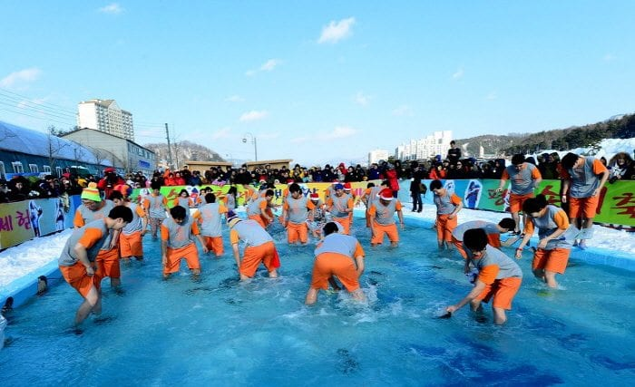 winter activities in korea Pyeongchang Trout Festival