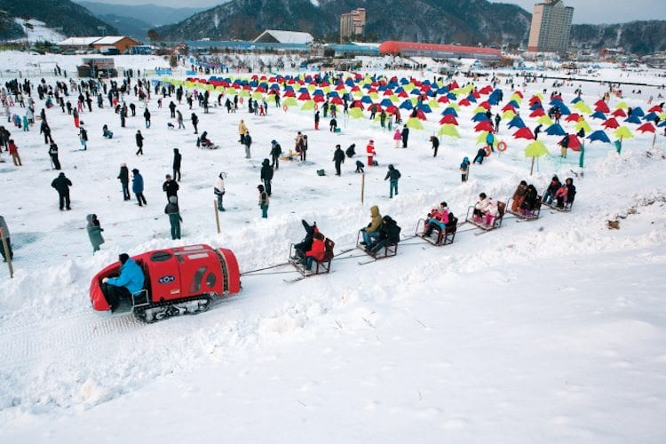 winter in South Korea Activities Things to Do Pyeongchang Festival