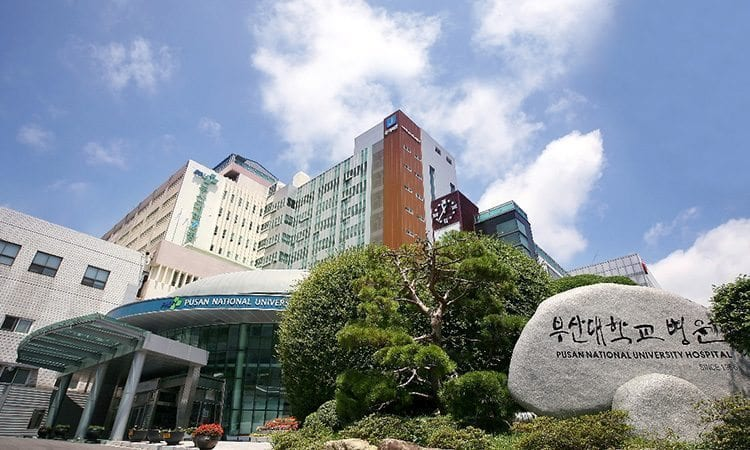 Pusan National University Hospital English Speaking OBGYN Busan